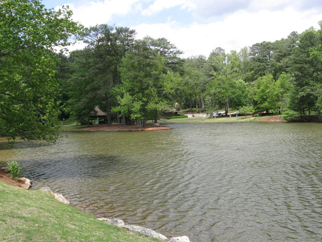 View of the lake with cars and picnic areas across the water