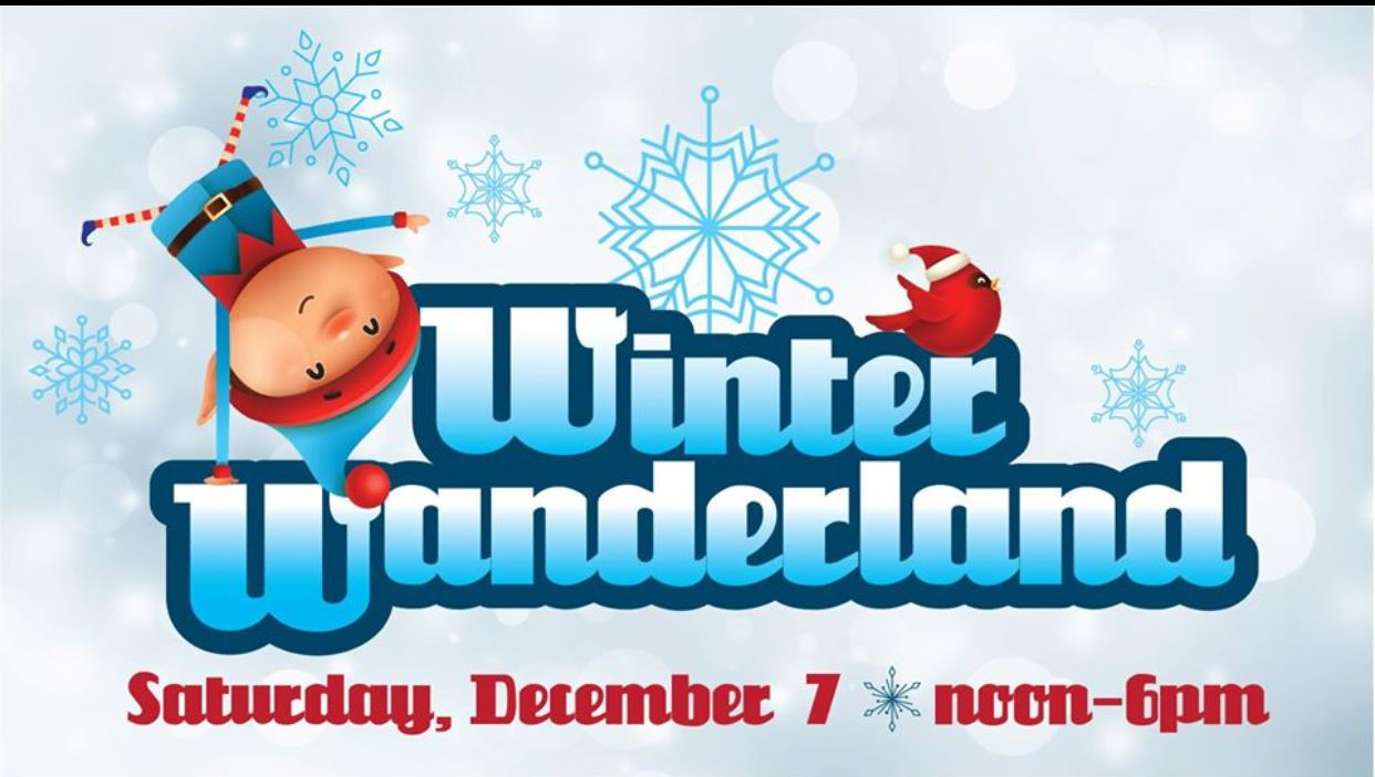 Winter Wanderland